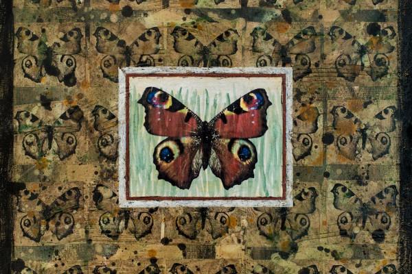 Série Papillon # 3