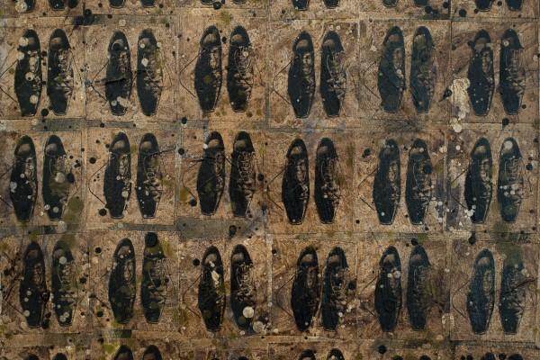 Série chaussures d'artistes # 2 – PACO BILL