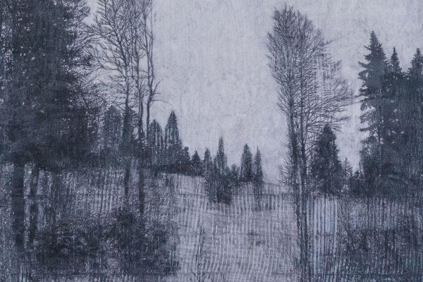 Bois de Ban – VD 46.860634, 6.546270